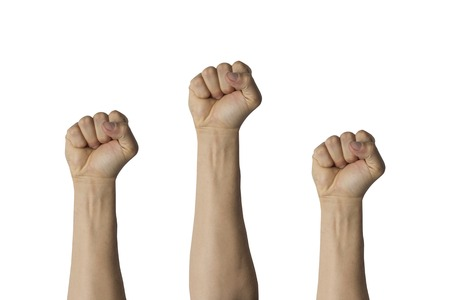 Hands raised up and clenched into a fist on a white isolated. Concept of unity, revolution, revival, rebellion.
