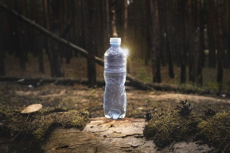Plastic water bottle stands on a felled log with moss and mushrooms on Forest. Concept of natural clean water. Added highlight effect.