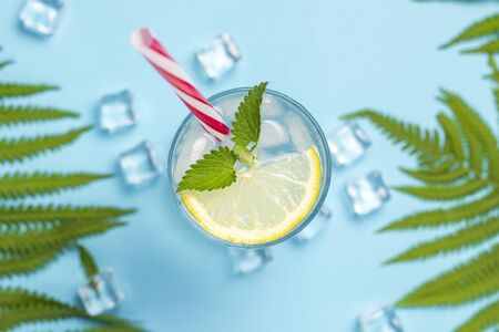 Glass of water or drink with ice, lemon and mint on a blue background with palm leaves and fern. Ice cube. Concept of hot summer, alcohol, cooling drink, thirst quenching, bar. Flat lay, top view. Reklamní fotografie