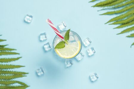Glass of water or drink with ice, lemon and mint on a blue background with palm leaves and fern. Ice cube. Concept of hot summer, alcohol, cooling drink, thirst quenching, bar. Flat lay, top view. Stock Photo