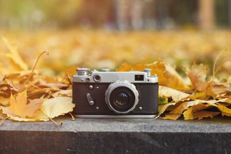Camera lies on the curb in an autumn park with yellow leaves.