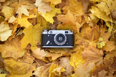 Retro camera lies on the yellow autumn leaves. Concept of beginning of the autumn and the beginning of the fall of leaves. Flat lay, top view.