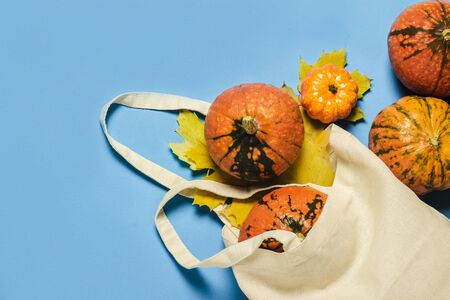 Ripe Pumpkins in a shopping bag and yellow autumn leaves on a blue background. Harvest concept, Thanksgiving day, cook food, autumn. Flat lay, top view.