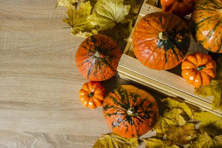 Ripe pumpkins in a wooden box on a wooden background. Harvest concept, autumn, halloween eve. Banner. Flat lay, top view.