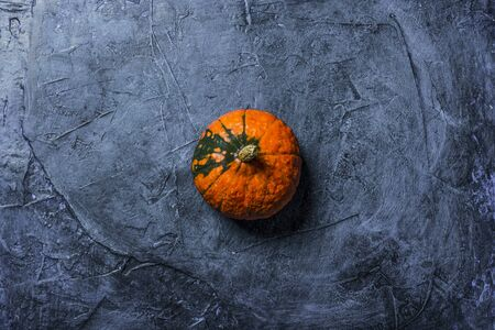 Single Pumpkin on a dark blue stone background. Concept autumn, halloween, harvest. Banner. Flat lay, top view.