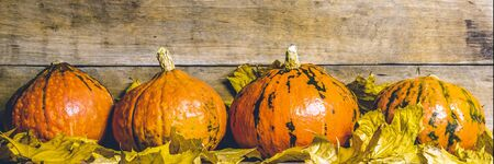 Pumpkins on a wooden background. The concept of autumn, harvest, Halloween eve. Banner.