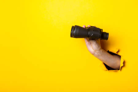 Woman's hand holds black binoculars on a yellow background. Travel, find and search concept. 免版税图像