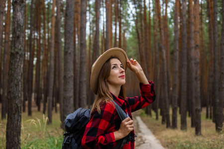 Young woman in a hat, red shirt and backpack looks at the treetops in a pine forest. Camping in the woods. Stock fotó