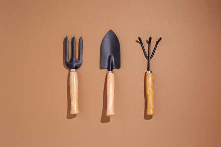 Gardening tools on a brown background. Top view, flat lay.