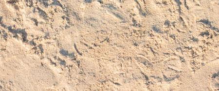 Background of a sandy beach under sunlight. Top view, flat lay. Banner.