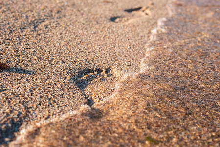 Footprint on the sandy beach is washed by the wave. Фото со стока