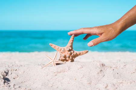 Female hand is touching starfish on a sandy beach. Tropical nature. Фото со стока