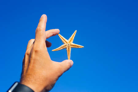 Male hand holding a starfish on a blue sky background.