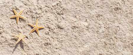 Golden starfish on the sand. Top view, flat lay. Banner.