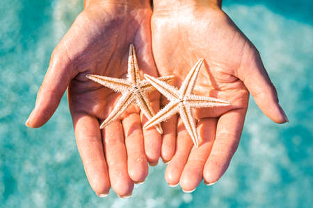 Women's hands hold two starfishes against the background of the sea. Top view, flat lay.