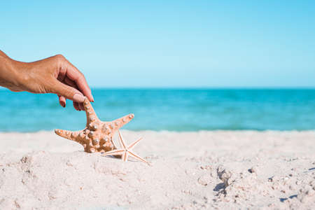 Female hand holds starfish on a sandy beach. Vacation concept.