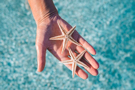 Female hand holding two starfish on a background of the sea. Top view, flat lay.