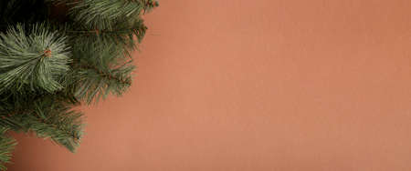Fir branches on a brown background. Concept for New Years and Christmas Eve. Banner. Фото со стока