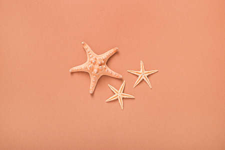 Starfishes on a brown background. Beach and vacation concept. Global warming. Banner. Flat lay, top view.