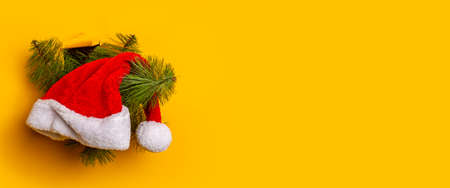 Christmas tree with a Santa Claus hat peeps out of a hole in a yellow background. Concept for New Years and Christmas Eve. Banner. Фото со стока