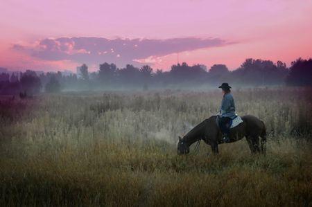 Cowboy  in the steppe Zdjęcie Seryjne - 2919248