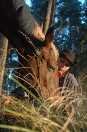 masticate: Horse with a cow-boy Stock Photo