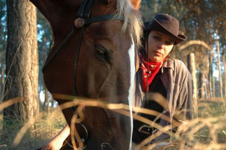 Horse with a cow-boy, close-up photo