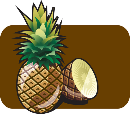ananas: pineapple