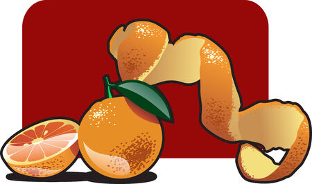 rinds: Vector color illustration of a orange.  Illustration