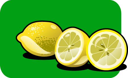 lobule: Vector color illustration of a lemon.  Illustration
