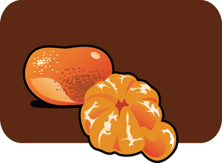 Vector color illustration of a tangerine.  Vector