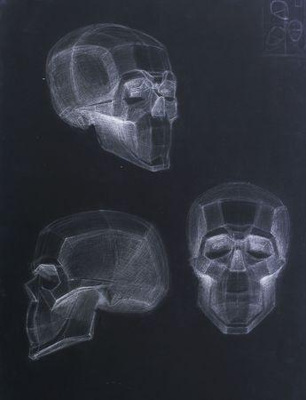 body painting: Human Skull Stock Photo