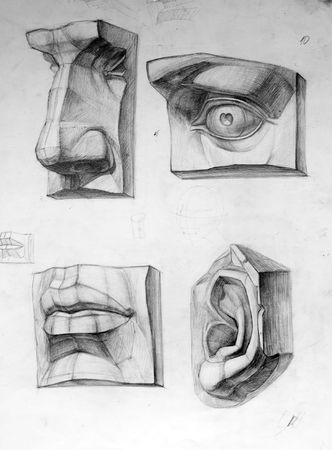 Parts of face photo