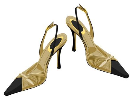 women s shoes Stock Vector - 14396243