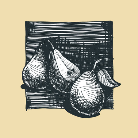 gravure: Icon of pear illustration stylized as engraving.