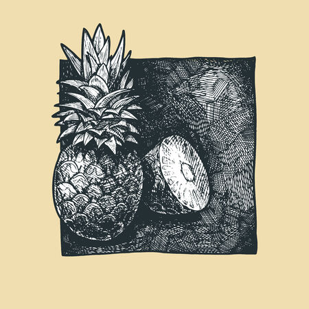market gardening: Vector  illustration of a pineapples  stylized as engraving