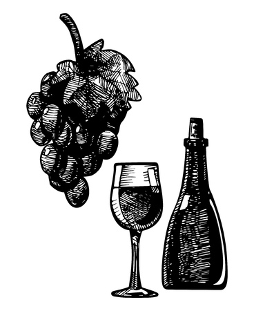 facer: Wine glass and vine, vector illustration stylized as engraving.