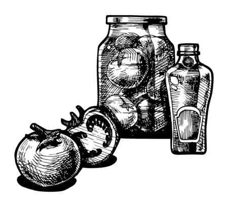 Vector  illustration of a tomato and ketchup stylized as engraving. Vector