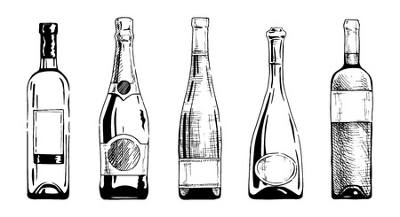 style: Vector set of wine and champagne bottles in ink hand drawn style. isolated on white.