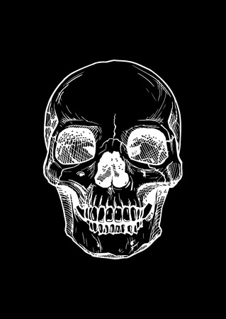 isolated background: black and white illustration of  human skull with a lower jaw in ink  style. isolated on black.