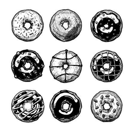 Vector hand drawn illustration of donuts set. Dessert. Ilustracja