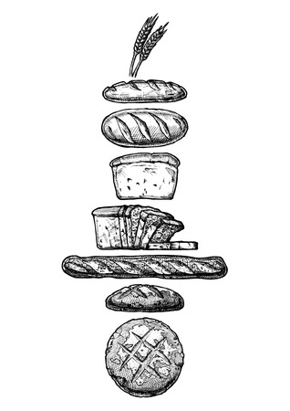 Vector hand drawn illustration of different breads: wheat germ, long loaf, pan loaf (sliced), baguette and boule. Black and white, isolated on white.