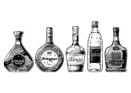 Vector hand drawn illustration set of different brandies types. Cognac, and more.