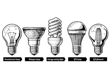 Hand drawn illustration of the light bulb evolution set. incandescent light bulb, tungsten halogen, Energy-saving light, LED lamp and light-emitting diode filament. Isolated on white background.