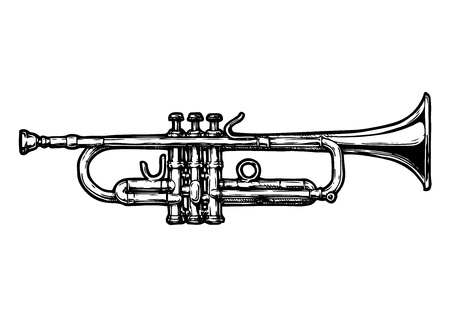A vector hand drawn in black and white illustration of trumpet, isolated on white.