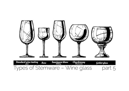 Types of wine glass. Standard wine tasting, rose, sauvignon blanc, chardonnay and goblet glasses. illustration of stemwares in vintage engraved style. isolated on white background. Illustration