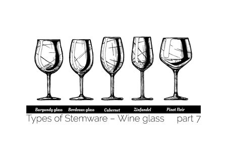Types of red wine glass. Burgundy, Bordeaux, Cabernet, Zinfandel and Pinot Noir glasses. illustration of stemwares in vintage engraved style. isolated on white background.