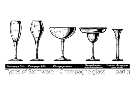 Types of champagne glass. Flute, tulip, coupe, margarita and stemless glasses. illustration of stemwares in vintage engraved style. isolated on white background.