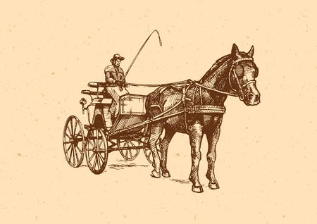 Vector illustration of spider phaeton. Open sporty carriage drawn by one horse. Ilustrace