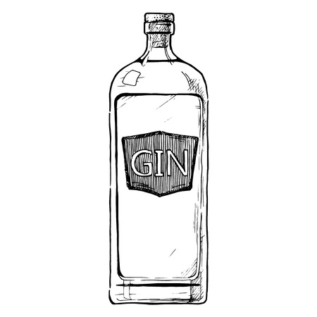 Vector hand drawn illustration of bottle of Gin in ink hand drawn style. isolated on white.